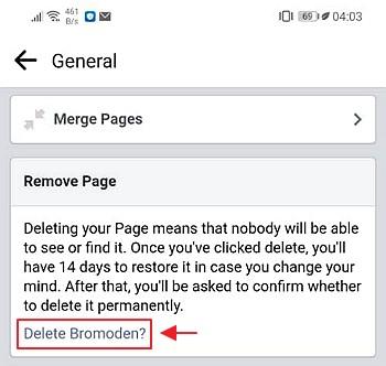 cara padam page facebook
